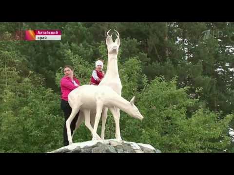О развитии внутреннего туризма говорили на заседании Президиума Госсовета в Алтайском крае