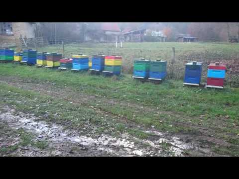Пчеловодство Германии. 18. November 2016