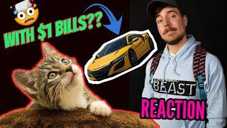 MrBeast Bought An Expensive Car Using Only $ 1 BILLS | REACTION VIDEO