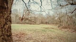 FPV session with my 5 year old in Herschel Park slough