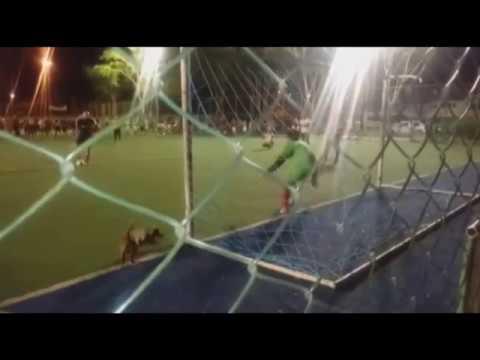 Четверолапый помощник вратаря отбил пенальти вместо него!