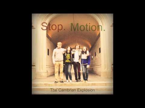 Stop. Motion. - Oak Tree (demo)