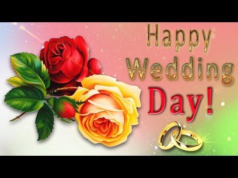👰 🤵 Happy Wedding Day ! 👰 🤵 4K Animation Greeting Cards