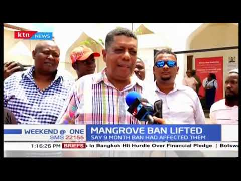 Mangrove ban lifted: Lamu residents welcome decision