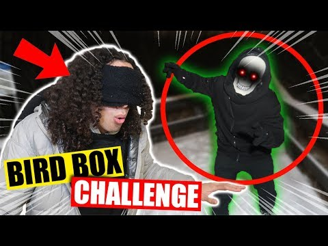 *GONE WRONG* DO NOT TRY THE BIRD BOX CHALLENGE AT 3 AM!! (SOMETHING IS FOLLOWING ME!!)