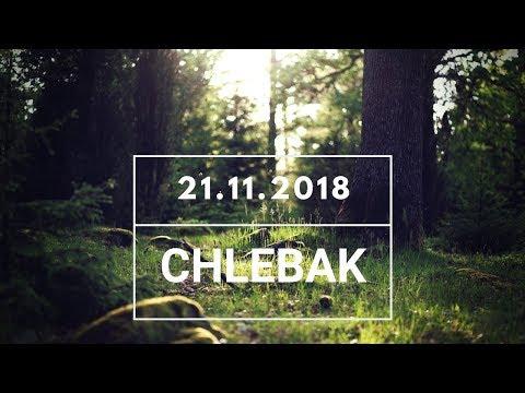 Chlebak [#365] 21.11.2018 видео