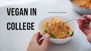 What I Ate this Week! (vegan university student)