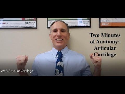 Artroza articulațiilor genunchiului cauzele și tratamentul