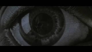 Donnie Darko (2001) Video