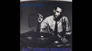 DONALD  FAGEN  -   WALK   BETWEEN   RAINDROPS