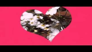 تحميل اغاني Aranjuez la tua voce Dalida MP3