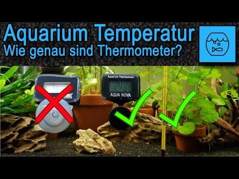 Aquarium Temperatur: Wir prüfen die Genauigkeit der Thermometer im Aquarium
