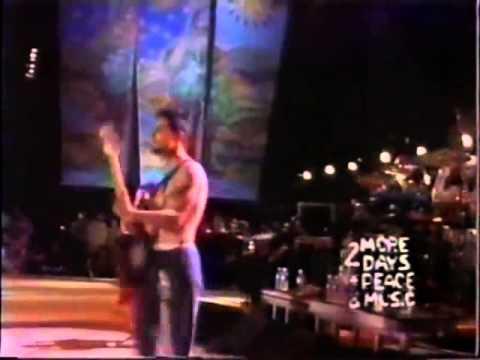 Red Hot Chili Peppers Organic Anti-Beat Box Band Live Woodstock 94