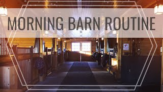 Morning BARN ROUTINE & Feeding The Horses | Another Day In The Life + Barn Chores EQUESTRIAN VLOG
