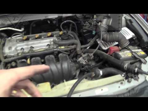Die Gazelle nekst das Benzin oder der Dieselmotor die Rezensionen