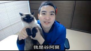 #482【谷阿莫】人貓廢片1