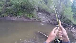 Fly Fishing Cimarron River New Mexico