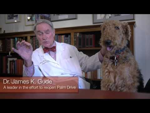 Testimonial – Dr. James K. Gude