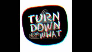 Turn Down For What ( Spanish Version ) - Bemany