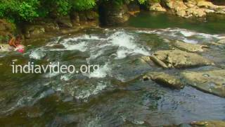 preview picture of video 'Root Bridge at Mawlynnong, Shillong'