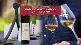Moscato Passito - Cantina Benato