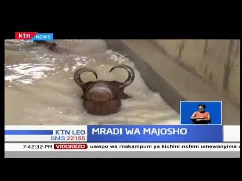 Wadi ishirini katika Kaunti ya Taita Taveta zitafaidika na mpango wa majosho