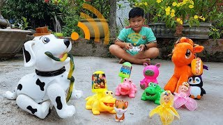Trò Chơi Bạn Pin and Dog ❤ ChiChi ToysReview TV ❤ Đồ Chơi Fun Song