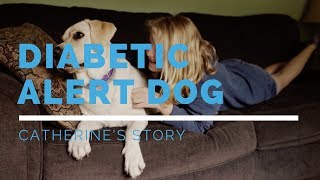 Diabetic Alert Dog Feature: Catherine's Story