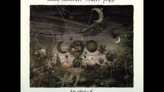 Bewitched - Andy Summers, Robert Fripp