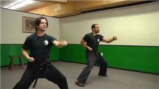 Kung Fu Techniques : How Do I Learn Kung Fu?