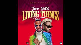 9ice Ft  Davido– Living Things Remix  Official Video