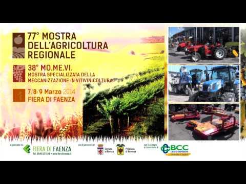 MOMEVI - MOSTRA AGRICOLTURA FAENZA (VIDEO)