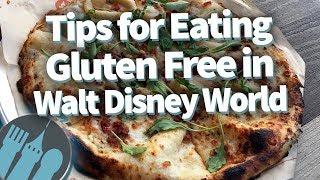Tips For Gluten Free Eating In Disney World!