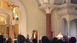 Fr. Mark Miley's Homily at Gifts for a King @ St. Pius X Church, Lafayette, LA