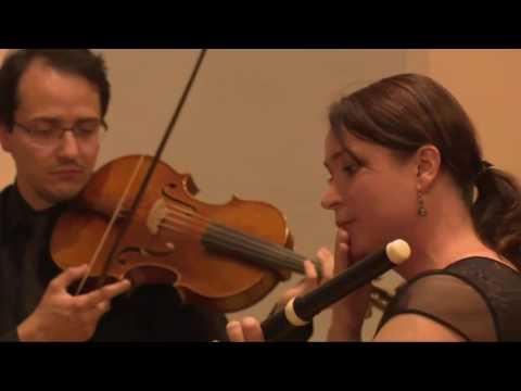 J.S.Bach - Triple concerto in A minor BWV 1044 Anastasia Antonova, harpsichord