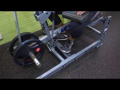 Seated Calf Raises Toes Out