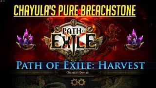 PoE 3.11 Harvest - Chayula's Pure Breachstone - Nice EXP per run
