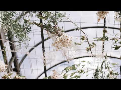 Conto de Fadas Festa de Casamento Sorocaba Casamento ao Ar Livre Sorocaba Casamento no Interior Sorocaba
