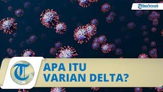 Apa itu Varian Covid-19 Delta? Berikut Gejalanya yang Disebut Berbeda dengan Varian pada Umumnya