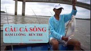 CÂU CÁ SÔNG LỚN BẮT ĐƯỢC TOÀN CÁ DỨA KHỦNG | HUYNH KHOA FISHING