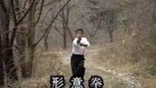 Su Dong-chen Neijiaquan