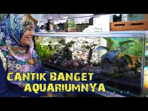 150g Reef Saltwater Aquarium Coral Reef Tank Update Rp M