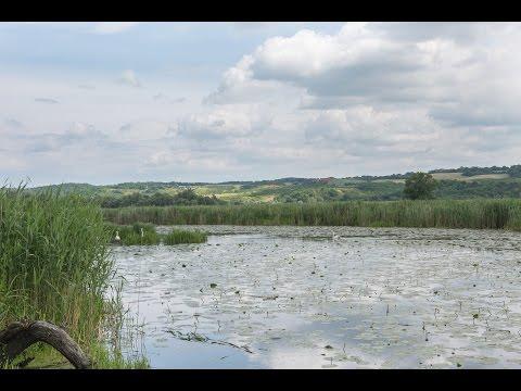 """Mit dem Kanu durch den Nationalpark """"Unteres Odertal"""""""