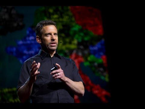 Hogyan lehet megszabadulni az emberi agy parazitáitól
