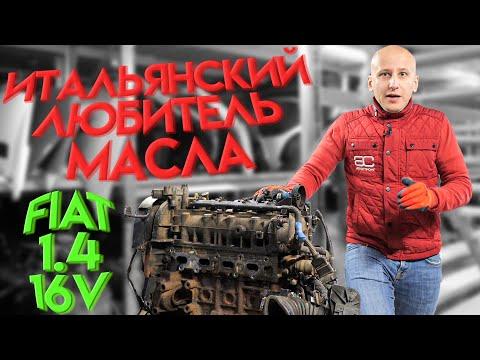 Простой мотор, который любит выпивать масло: Fiat 1.4 16v с фазокрутилкой.