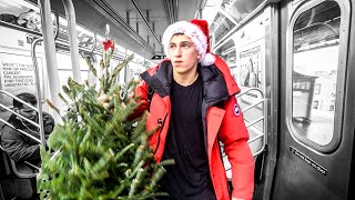 Buying a Christmas Tree in NYC
