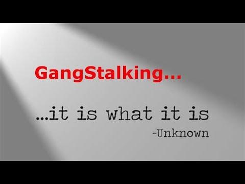 Dr John Hall and Zeph Daniel on GangStalking Full Length