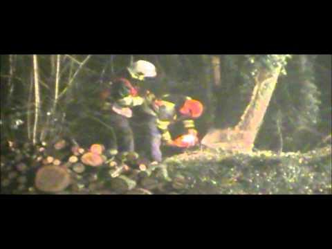 Brandweer vierlingsbeek zaagt boom om in vierlingsbeek 14-02-2011