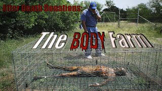 Short Documentary: The Body Farm