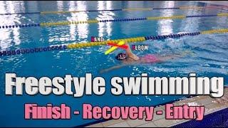 이현진 수영 /how To Freestyle Swimming / 자유형 팔돌리기 / 자유형배우기
